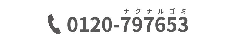 0120-797653
